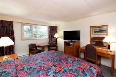 Town-&-Mountain-Hotel-Room-2016-06